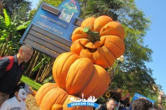gardaland-tribe-history-aperture-speciali-magic-halloween-2014-42