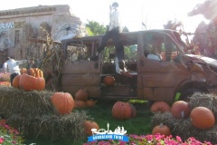 gardaland-tribe-history-aperture-speciali-magic-halloween-2014-51