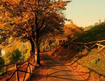 Parco Giardino Sigurtà: gli Eventi Autunnali