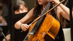 Masterclass Violoncello