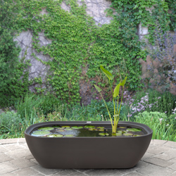 Container Gardens Products Ideas Garden365