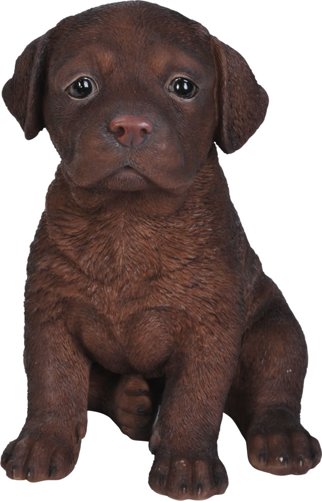 Pet Pals Chocolate Labrador Pup  Resin Garden Ornament