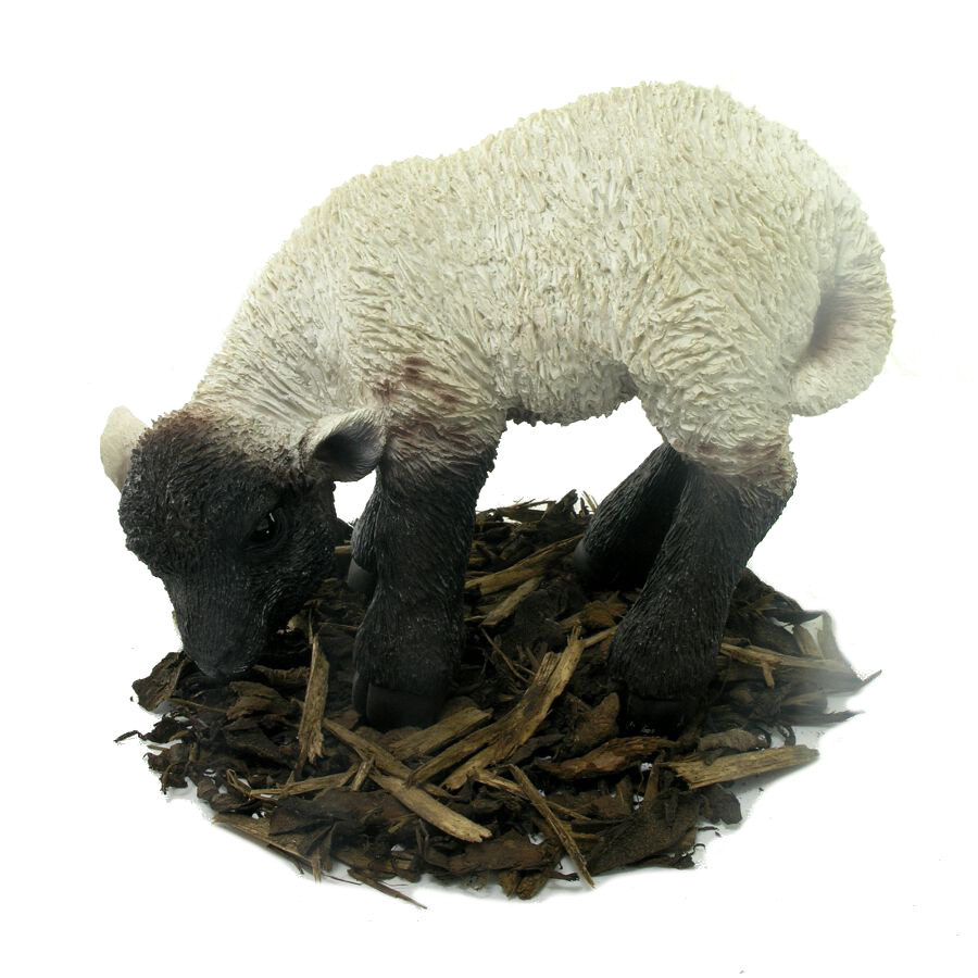 Eating Black and White Lamb  Resin Garden Ornament  2299  Garden4Less UK Shop