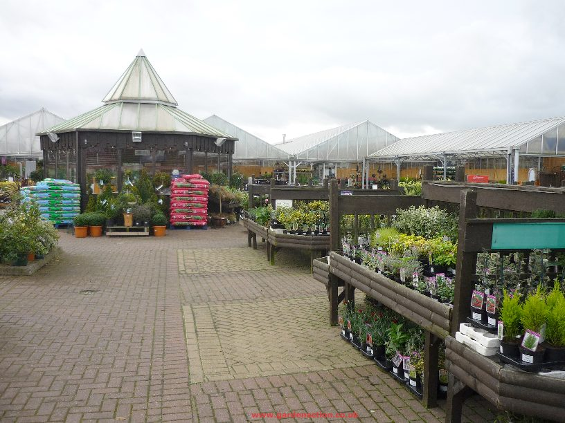 notcutts garden centre