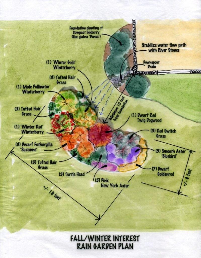 A Full Sun Rain Garden Design Garden Architecture Landscape