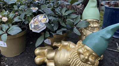 Sometimes only a golden gnome will do