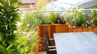Urban Garden Roof Design - Garden Club London