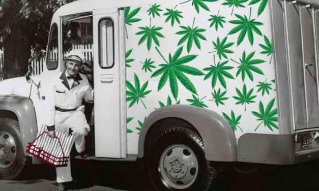 Cannabis Chaos: Marijuana Laws Across North America