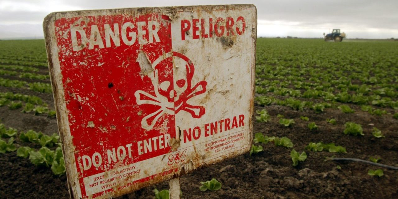 UN Declares Agricultural Pesticides Unnecessary