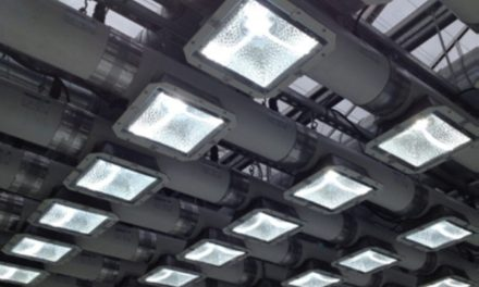 About Plasma Grow Lights