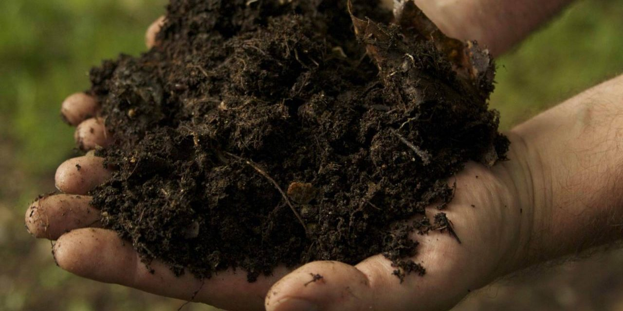 Does Bad Soil Exist?