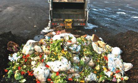 Fertilizer from Food Waste