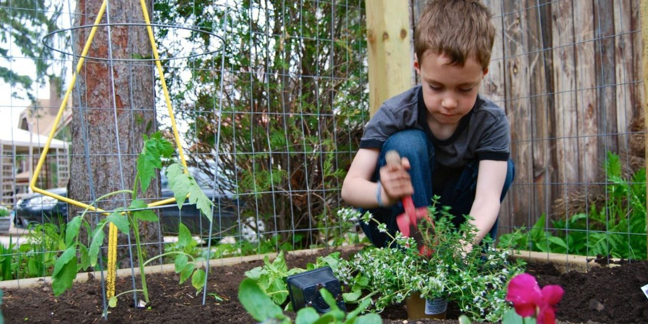 Gardening, Kids & Growing Healthy Choices