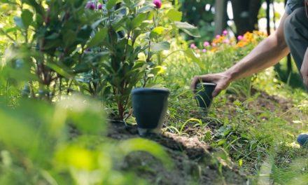 Gnome: Big Garden & Small Farm IoT