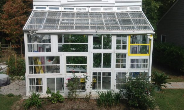 How to Build a Greenhouse: DIY Tips