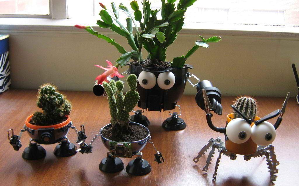 DIY Cool Indoor Garden Planters from Junk