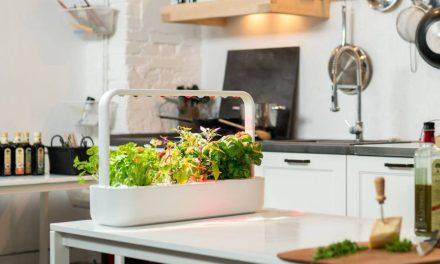 Meet Smart Garden 9