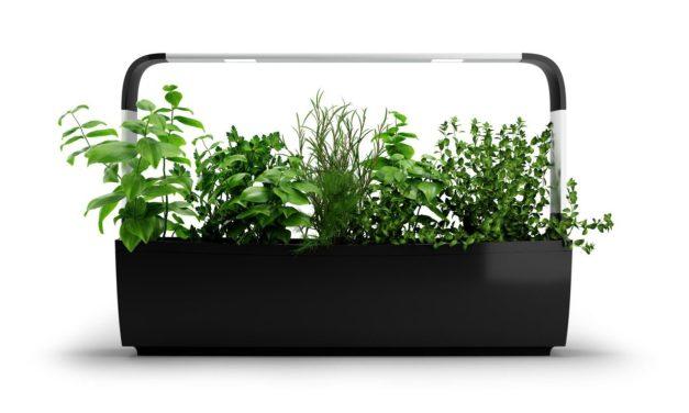 New Indoor Garden Systems from Tregren