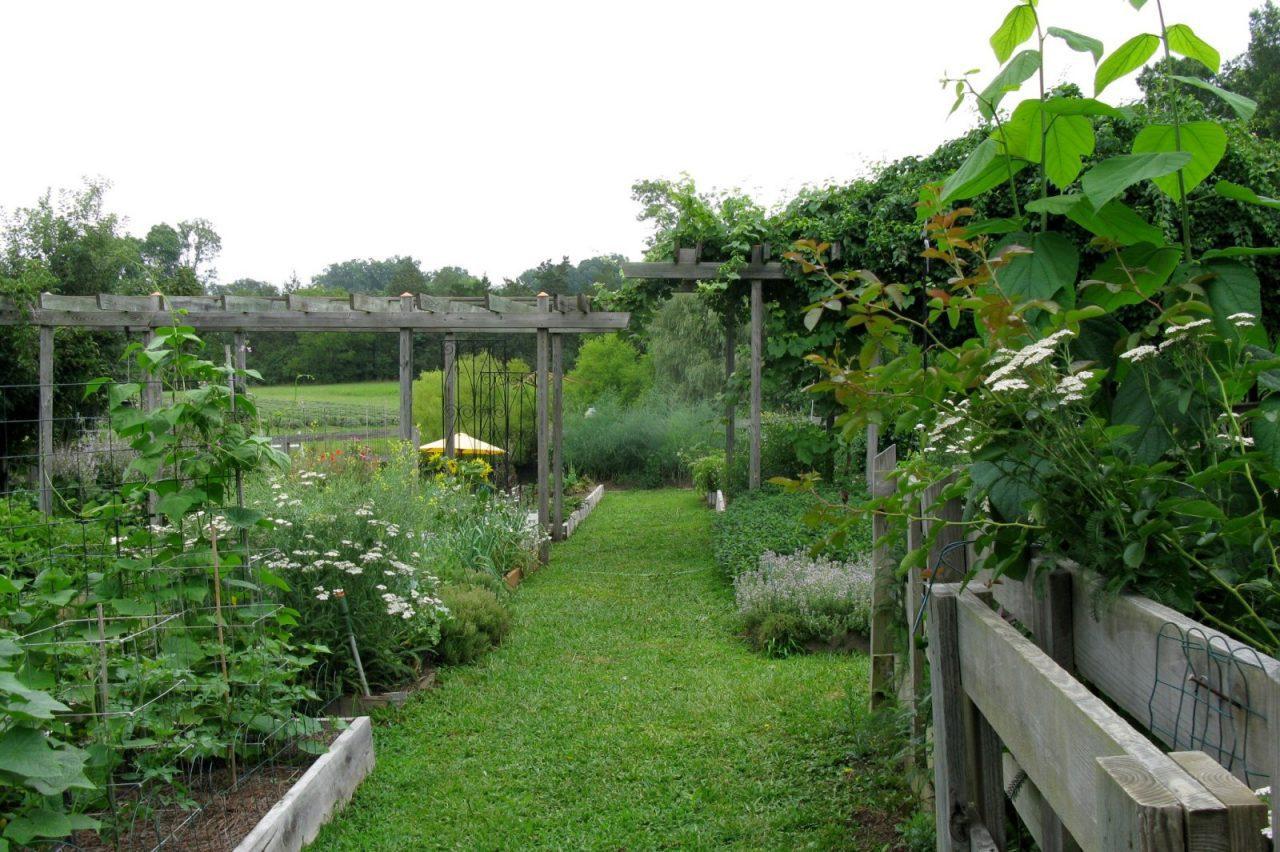 organic farm contest winner takes all