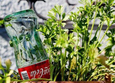 Coke Bottle Water Bubble Reservoir