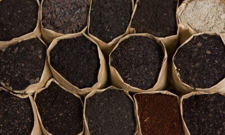 How Sustainable Is Your Indoor Garden Soil?