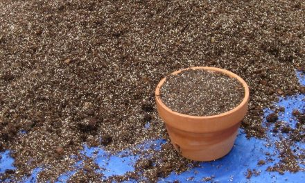 About That Bag of Potting Mix