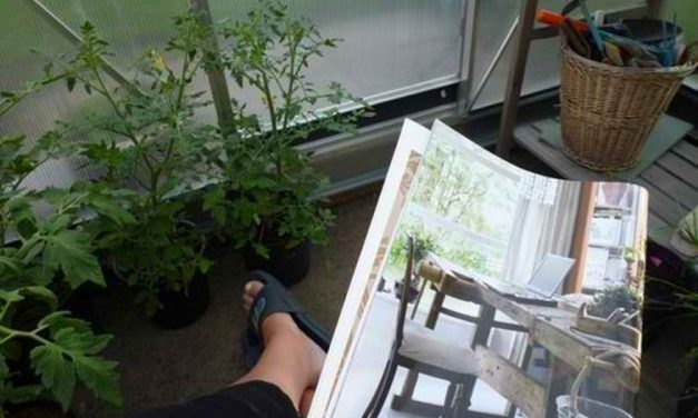 5 Reasons to Hang Out in Your Indoor Garden