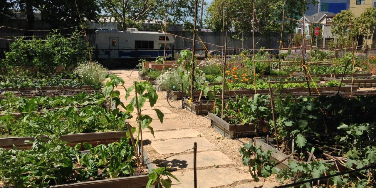 Sustainable City Food Systems Pact