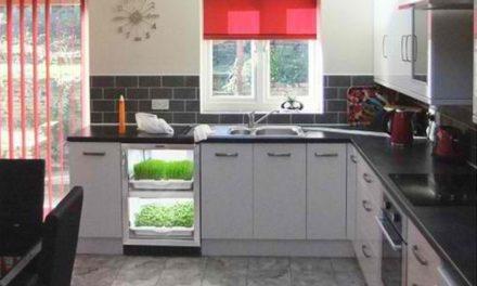 Computerized Indoor Kitchen Garden
