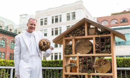 Growing Hotel Trend: Urban Beekeeping & Gardens