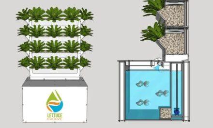 Urban Gardening With Vertical Aquaponics