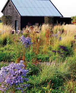 Perennial Gardens Garden Design
