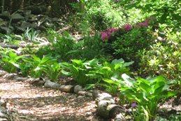 20 Garden Ideas Inspirational Gardening Ideas Garden Design
