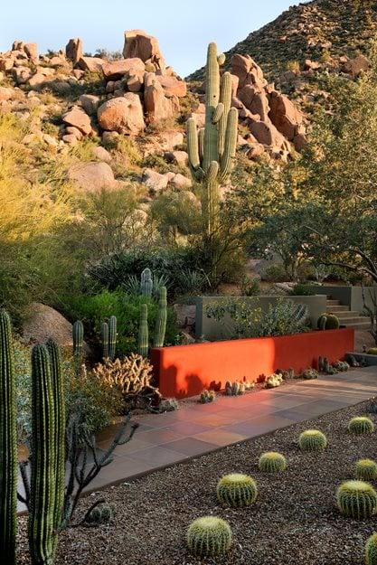 desert garden design ideas