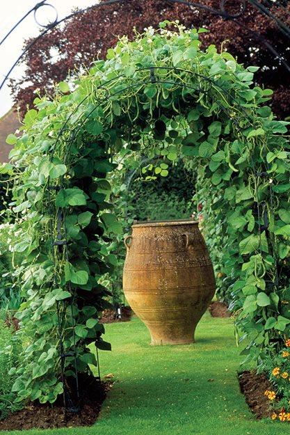 Arbors Trellises And The Edible Garden Garden Design