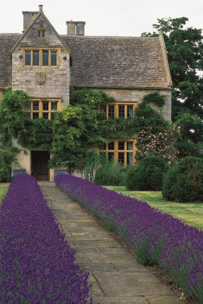 British Naturalistic Planting  Garden Design