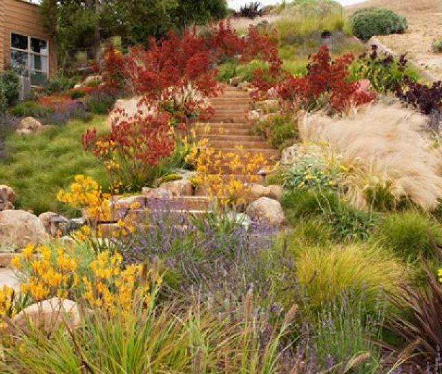 Landscape Solution Dream Teams Portland Garden Garden Design