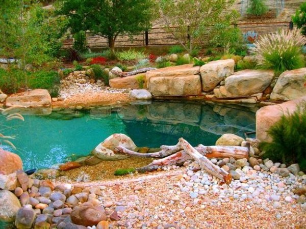natural-style poolscape garden