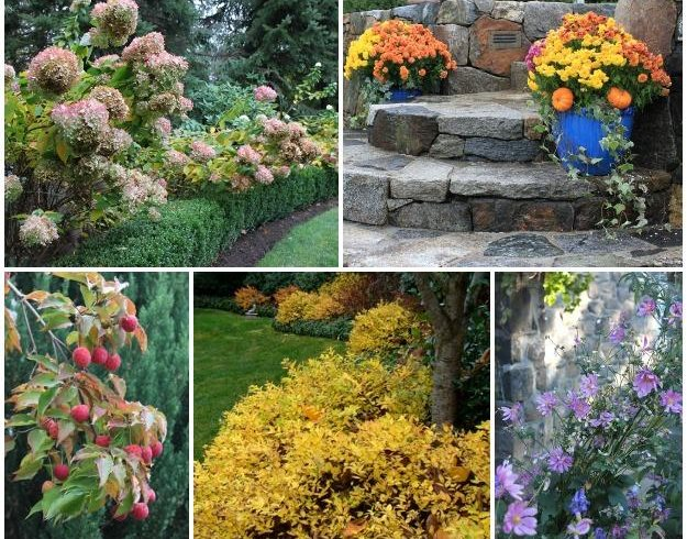 Ideas For An Alluring Autumn Garden Garden Design