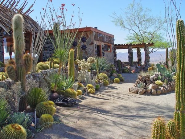 mojave rock ranch reinvents