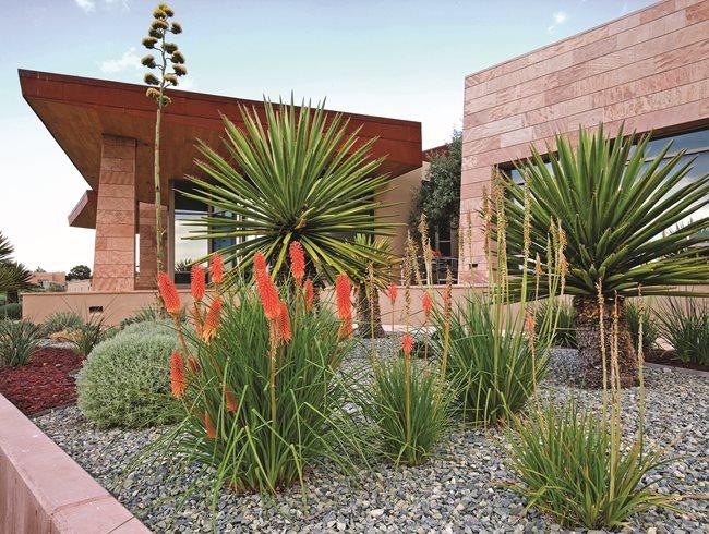 Modern Gardens In NW CA And BC Garden Design