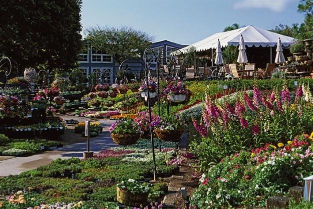 Destination Nursery Rogers Gardens  Garden Design
