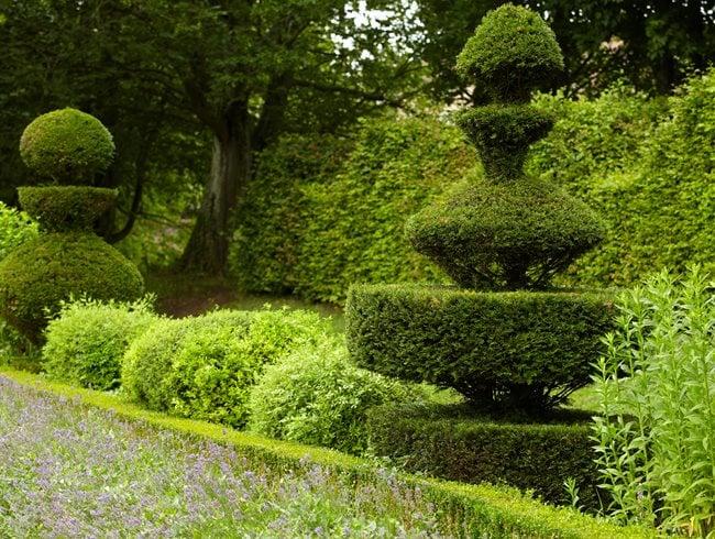 Topiary Shape Shifters Garden Design