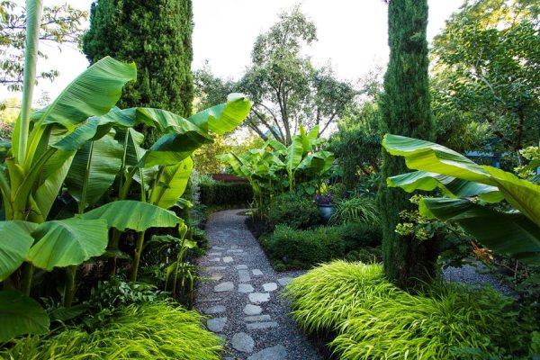 small garden tropical makeover