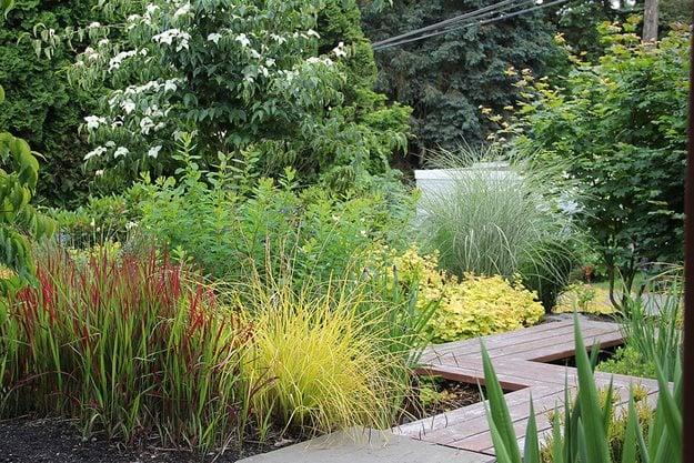 My Garden Working With Nature To Reinvent A Front Yard Garden