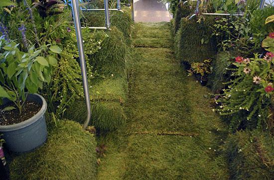 Chicago mobile garden