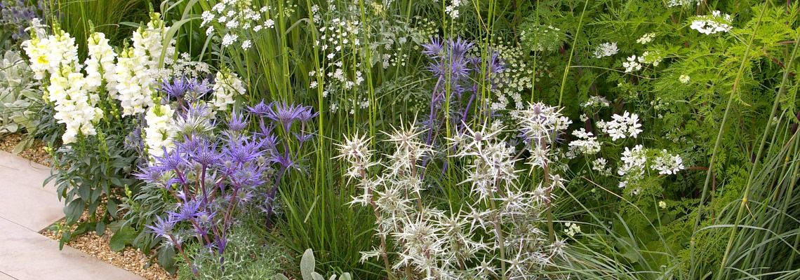 Hampton Court Gold Medal Garden
