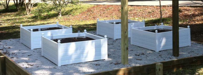 Self-watering Raised Beds