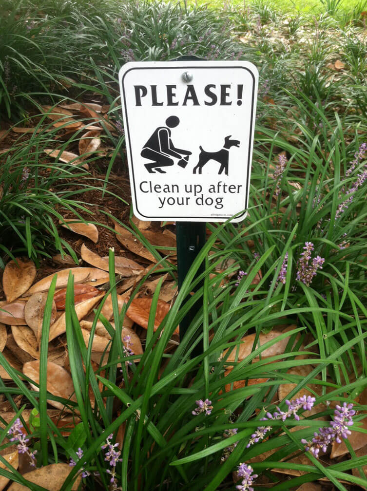 Please Clean Up After Your Dog Yard Signs