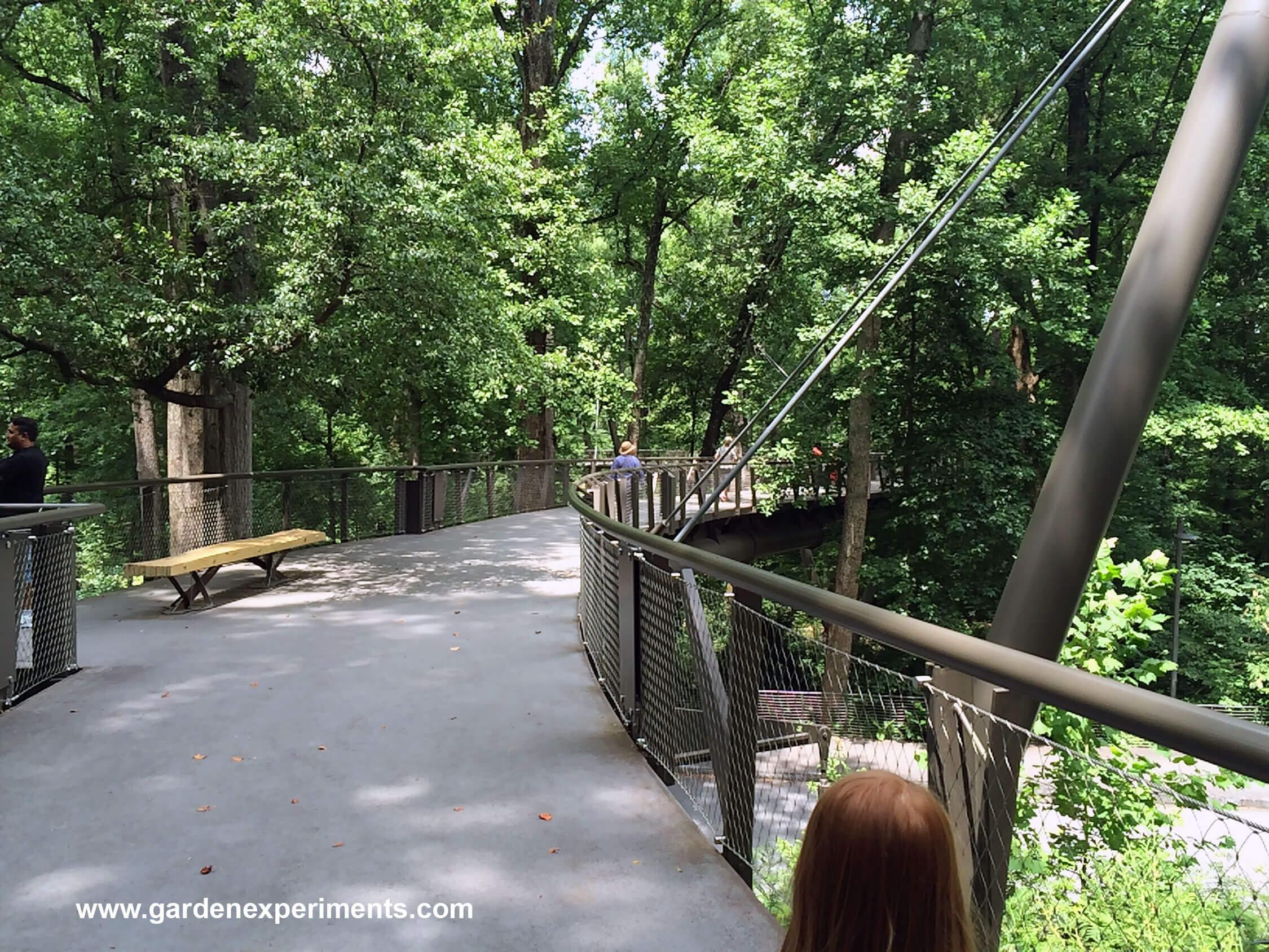 The Canopy Walk & Kendeda Canopy Walk - Atlanta Botanical Garden